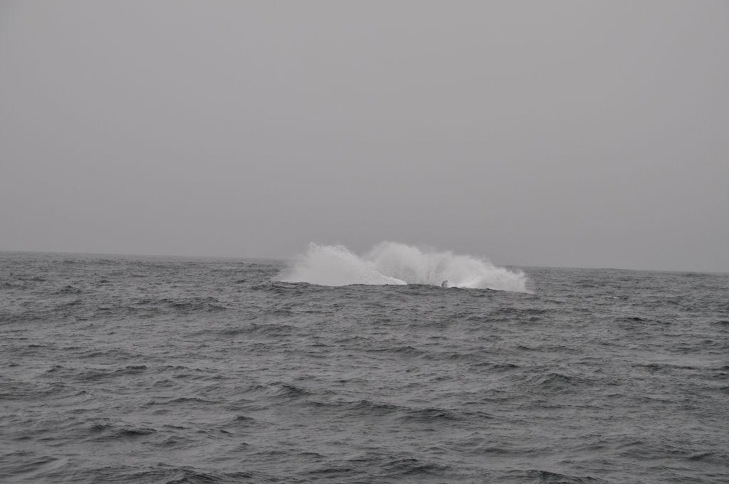 2012-07-11-CoastalLine (4)