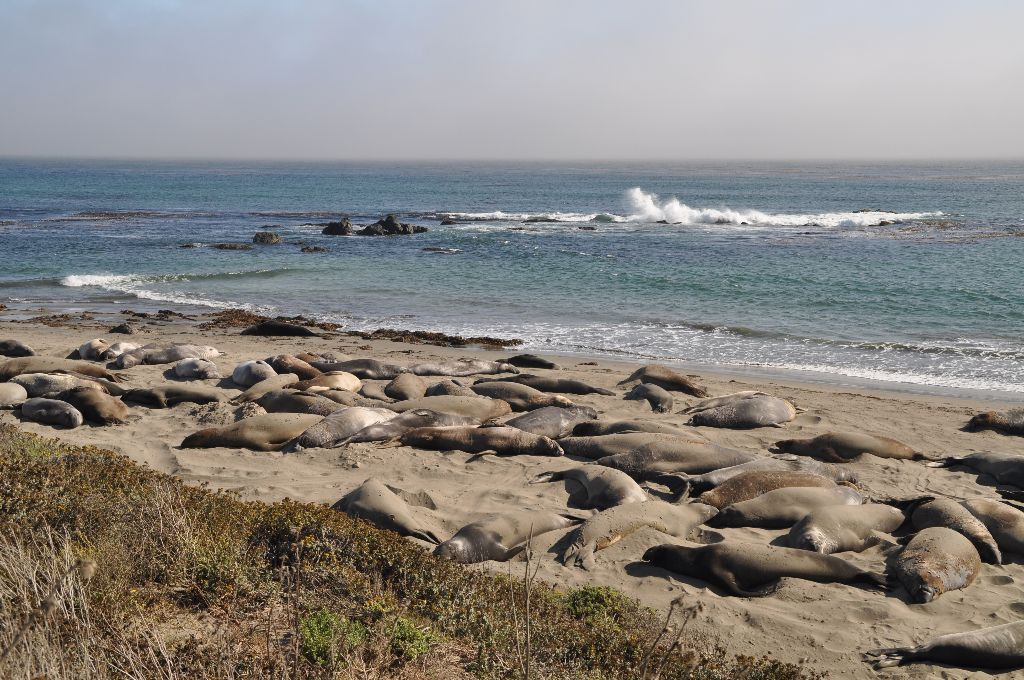 2012-07-11-CoastalLine (8)